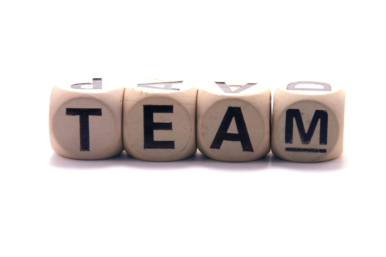 Our team Наша команда